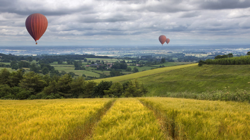 The Top 9 Things to do in East Riding of Yorkshire